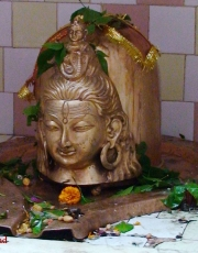 Lord Shiva Wallpapers7