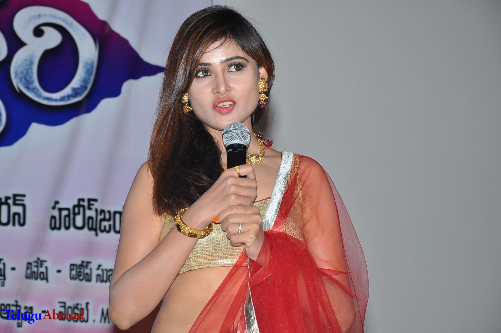 Seenugadi love story audio launch (26).JPG