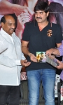 Seenugadi love story audio launch (32).JPG