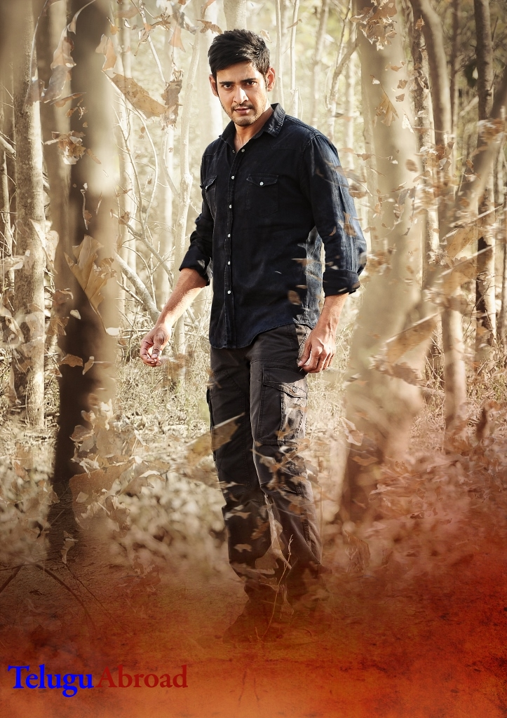 Srimanthudu Wallpapers (32).jpg