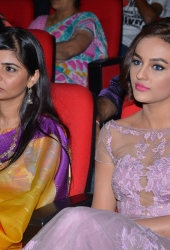 Tiger Audio Launch (12)