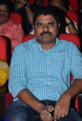 Tiger Audio Launch (3)
