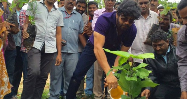 Tollywood celebs and Politicians Participated in Haritha Haram