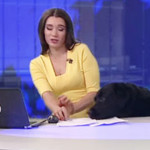 Watch: Dog  interruption in news channel